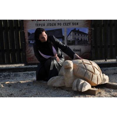 Drevená korytnačka - socha z dreva